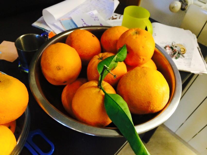 siciliske pomaranze